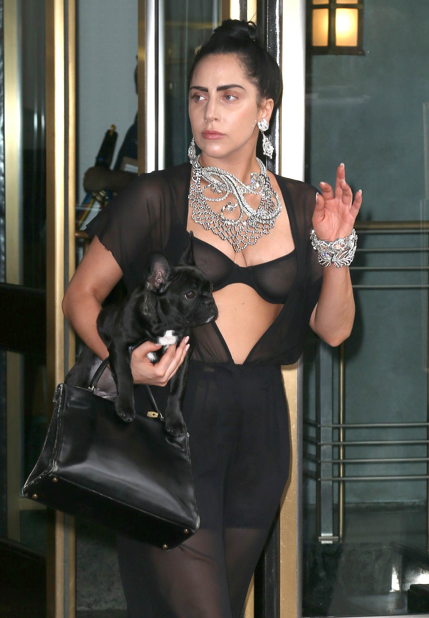 1. Леди Гага в прозрачном наряде прогулялась по Нью-Йорку