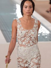Зои Кравиц засветила соски в платье от Александра Вонга