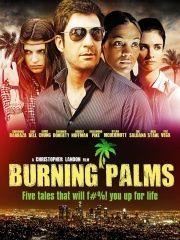 Горящие пальмы – эротические сцены