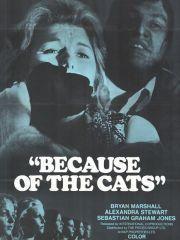 Из-за кошек – эротические сцены