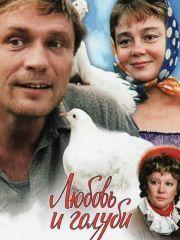 Любовь и голуби – эротические сцены