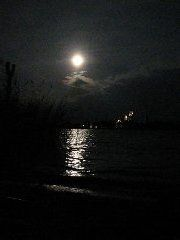 Ночь – эротические сцены
