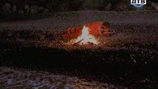 28. Эротические фрагменты с Дарьей Поверенновой – Дневники «Красной туфельки»
