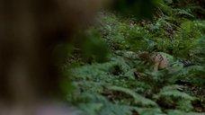 4. Секс Марго Робби с фашистом в лесу – Французская сюита