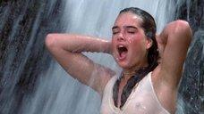 Мокрая Брук Шилдс у водопада
