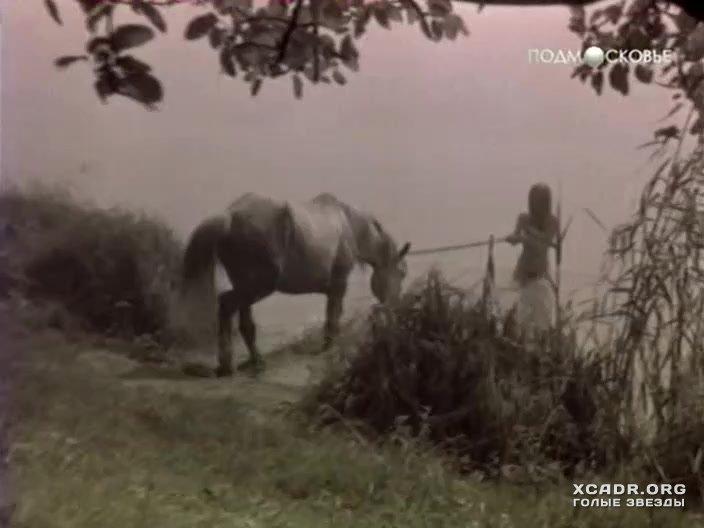 Зоофилия с конем жеребцом ебля с лошадью онлайн скачать