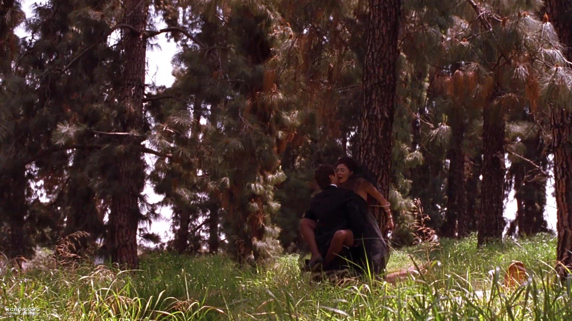 Секретарша в лесу фото 463-618