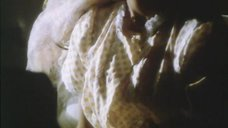 4. Прекрасное тело Орнеллы Мути – Аппассионата